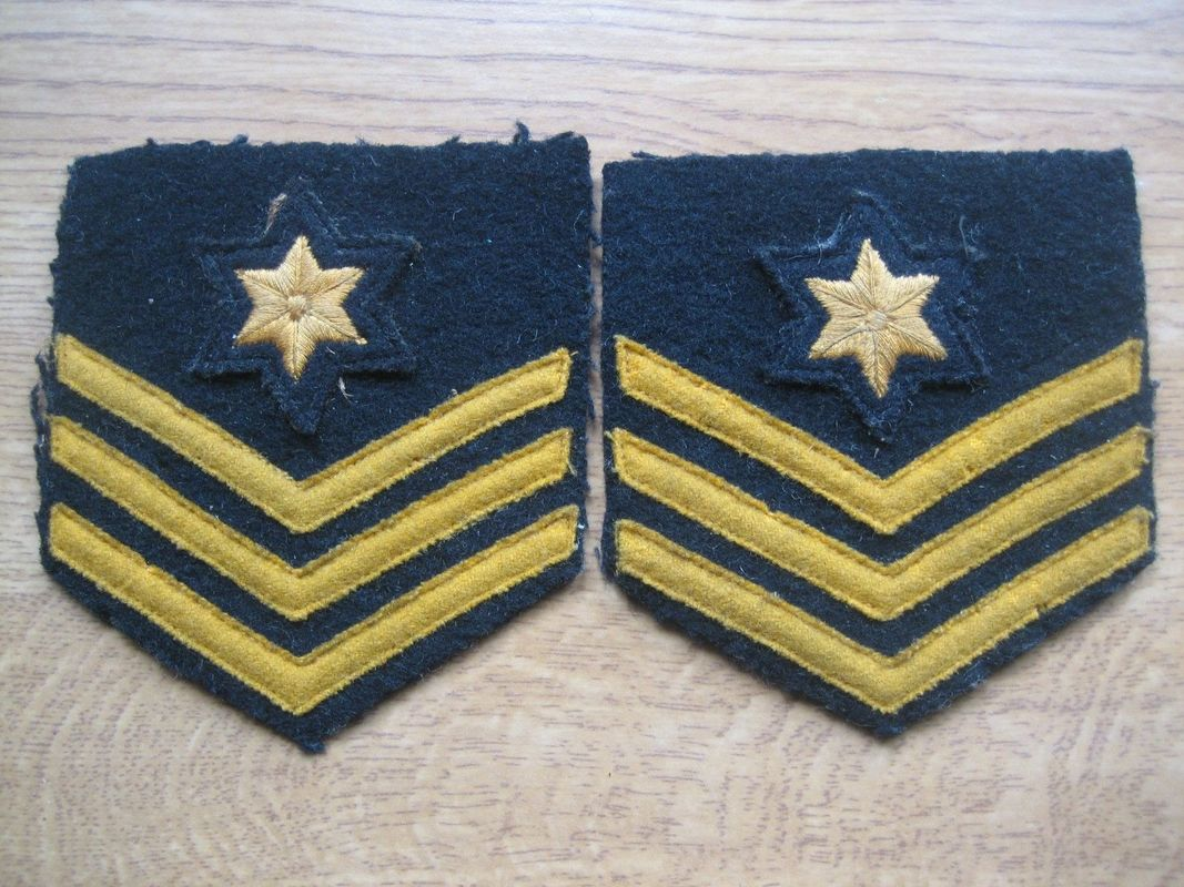 WW2 ARP Post Warden Stripes With Star.